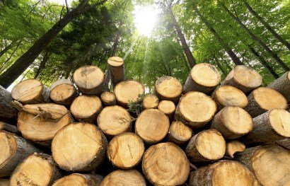 Fonds air bois : 2000€ pour vous aider à changer votre installation de chauffage au bois