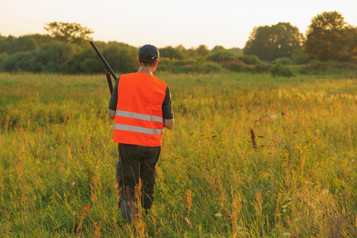 Ouverture de la chasse le 13 septembre 2020