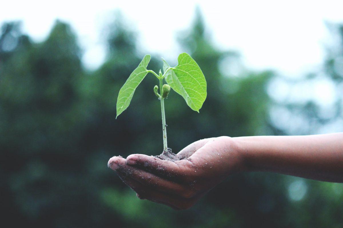 Une nouvelle stratégie économique pour le Grand Annecy tourné vers la transition environnementale des entreprises